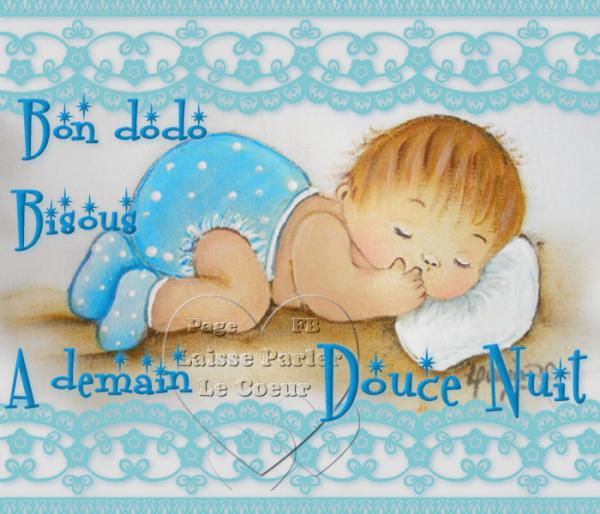 bonne   nuit   mes amies amis