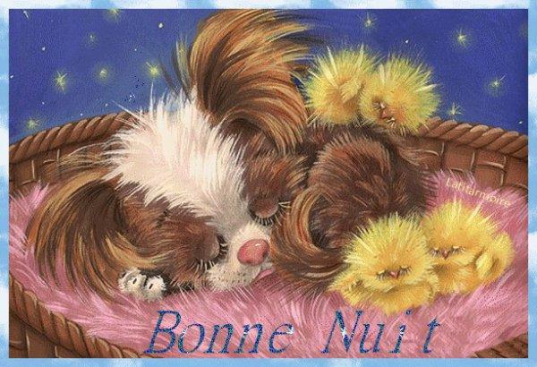 bonne nuit 😊