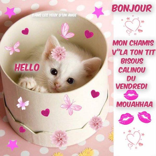 Bonjour C Est Vendredi Il Fait Froid J Aime La Vie Un
