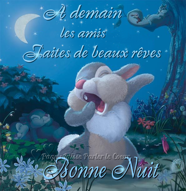 bonne  nuit  a  vous tous