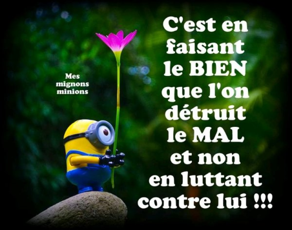 Jolie Texte Des Minions Jaime La Vieun Monde Fait D