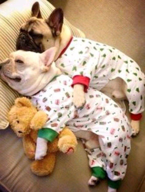 Bonne nuit à vous tous bisous ☺️☺️