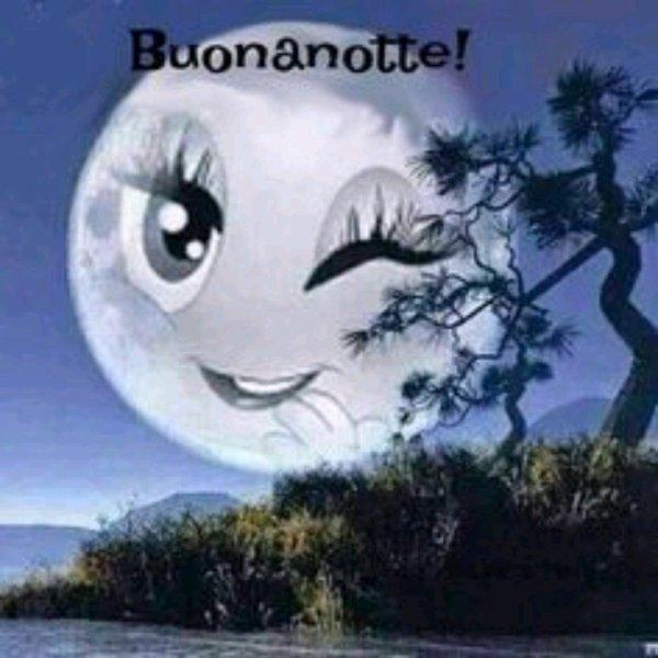 Bonne nuit à vous tous ☺️☺️