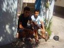 Photo de iko-azedin