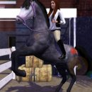 Photo de sims3-horse-dream