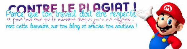 Présentation de mon blog !