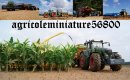 Photo de agricoleminiature56800