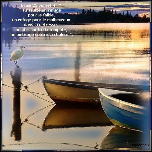 Mardi 1 janvier 2008 20012 est arrivé !  Bienvenue à bord du voyage 20012 Celui-ci durera 366 jours… Embarquons tous sur ce paquebot Et laissons Jésus le guider … Avec Celui-ci, même si les tempêtes surviennent, ce ne sera jamais le chaos ! Avec Lui, notre maison est construite sur le roc, Jésus n'est-il pas notre rocher ? En avant toute, voguons dignement vers demain ! Jésus sera comme tout au long de notre vie, notre soutien … Il te dit, Je suis toujours là pour tes besoins… Je suis l'Eau Vive et ton Pain quotidien…                                         Je suis La vie