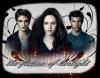 Bienvenue sur the-fiction-of-twilight ♥