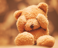 Teddy Bear <3