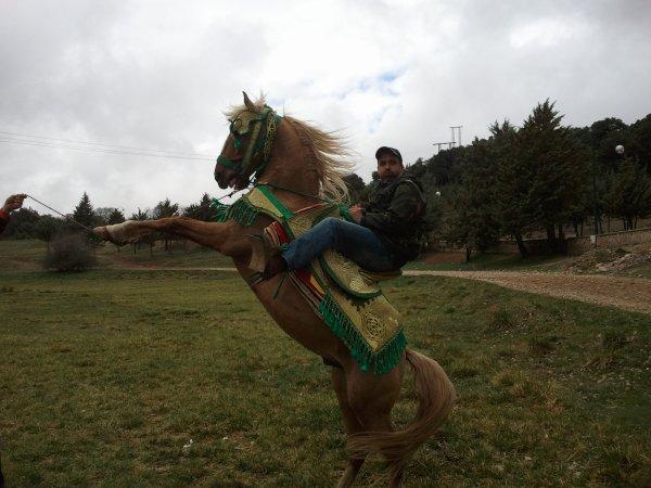 J'aime les chevaux, et je rêve d'être un jour  un bon cavalier.