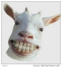 Appareil chèvre