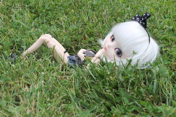 ~In My Garden~ Céleste