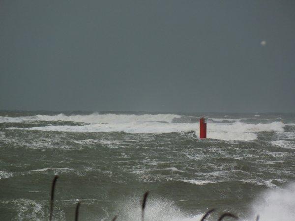 Un peu de vent ce matin...