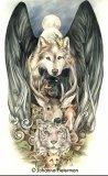 Photo de Gothic-Wolf