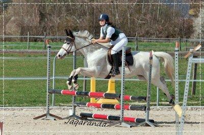 -  Etre heureux à cheval c'est être entre terre et ciel, à une hauteur qui n'existe pas ☼  -