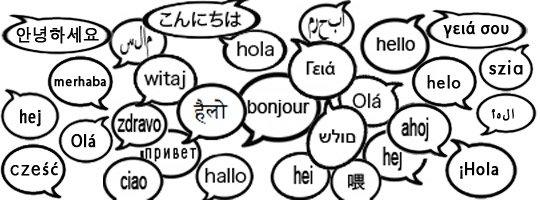 Plus Info sur les Langues Mortes et Étrangères pour Vous
