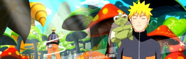 S'taime pas Naruto , Qu'est - ce que tu viens faire ici Man ? :P