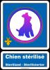Divers >> Info public >> Stérilisation chien