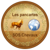 PancartesSosChevaux