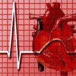 Les dix principales causes de décès(rapport de l'OMS)..