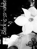Photo de Black-is-so-White