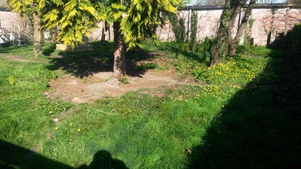 agrandissement de mon parc a canard