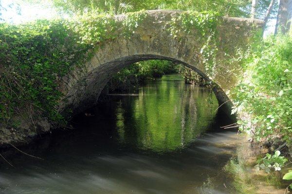 Le pont de la Tute inspire une artiste.