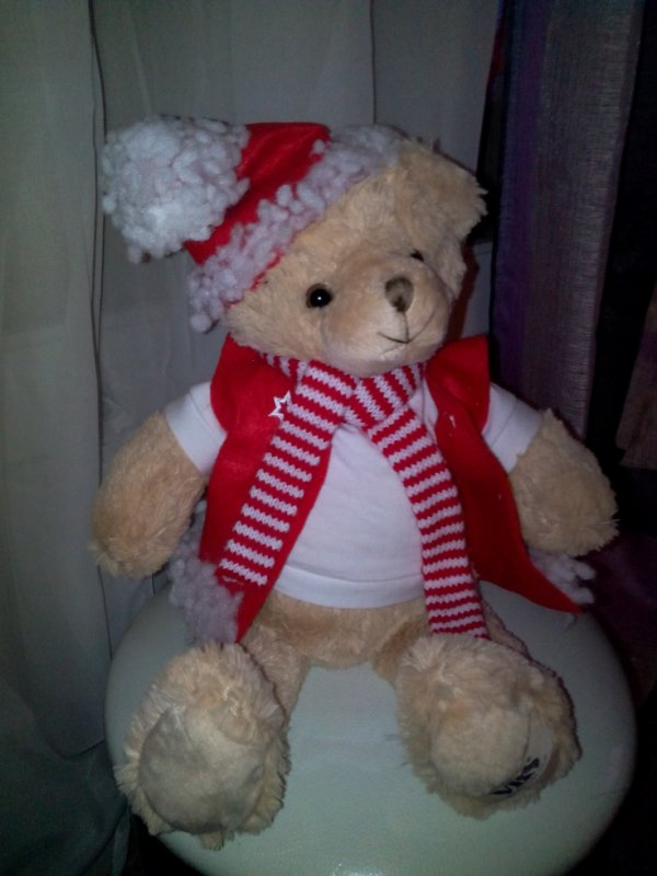 l'ours de noel