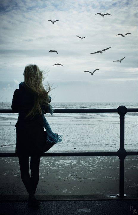 المغرور كالطائر كلما ارتفع في السماء صغر في أعين الناس