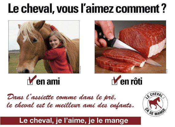 Le Cheval ...