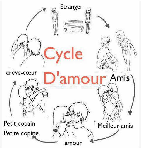 Le cycle d'amour