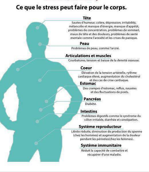 Ce que le stress peut faire au corps