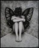 Photo de 1papillon-noir-des-nuit