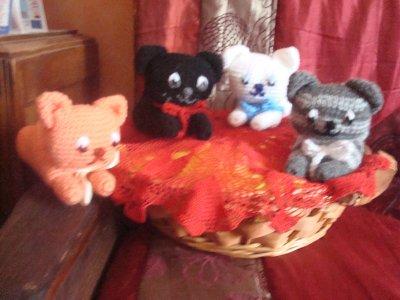 chatons dans les noix !!!!!!!!!!!!!!!!!!!!!!