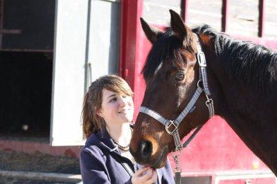 ~~ poney ~~