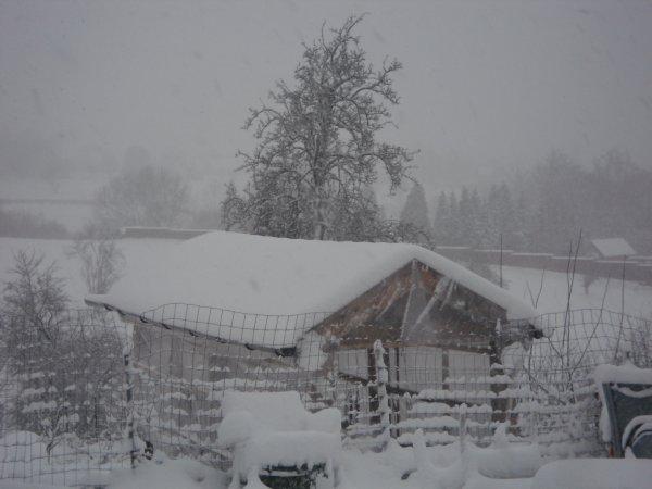 tapis blanc derriere la maison