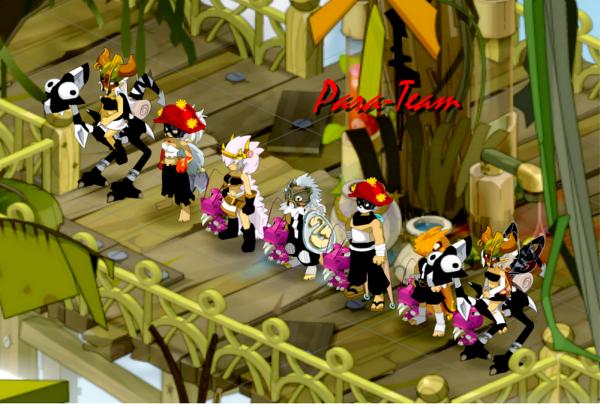 Présentation de la team Para !