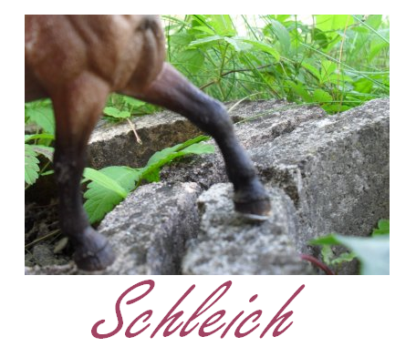 Schleichs