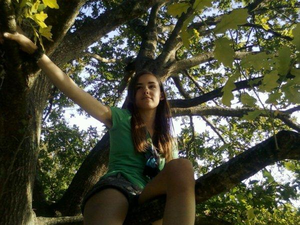 Moi dans un arbre :p