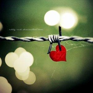 On est tous à la recherche de cette personne unique qui nous apportera ce qui manque dans notre vie. Et si on ne parvient pas à la trouver, on a plus qu'à prier pour que ce soit elle qui nous trouve.*