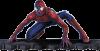 spider-didou13