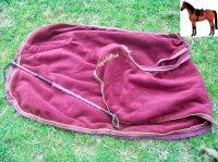 Article 8 : Un mors doré ne rend pas un cheval meilleur. La sellerie de Micromégas, elle ressemble a quoi ?