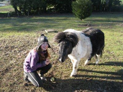 Il n'y a pas de secrets aussi intimes que ceux d'un cavalier et de son cheval.