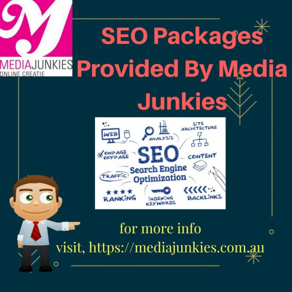 SEO Packages By Media Junkies