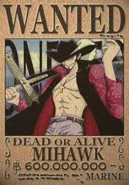 Mihawk l'oeil de faucon ♥
