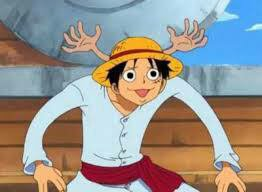 Luffy/chopper