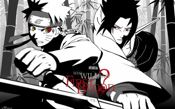 Naruto / Naruto Shippuuden