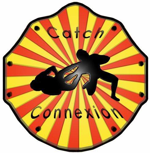 Blog de catch-connexion
