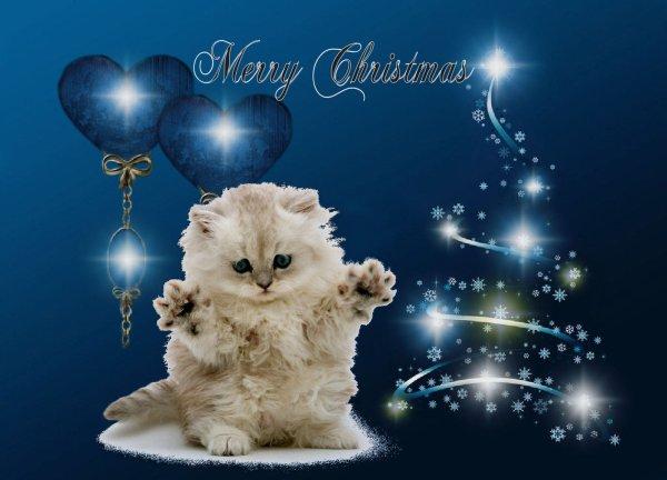 Joyeux Noël avec un peu de retard!!!!!!